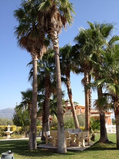 Photo 3 - Gardens