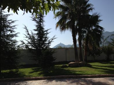 Photo 4 - Private garden