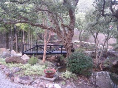 Foto 2 - Grundstück mit Baumbestand