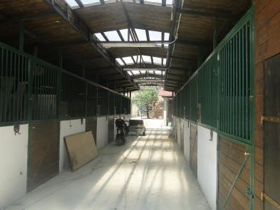 Photo 6 - Annexes