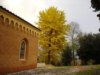 Foto 3 - Annessi