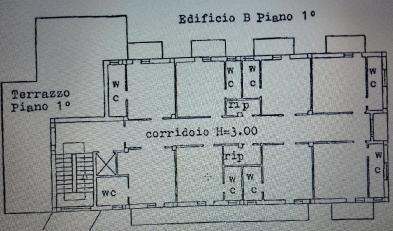 Foto 10 - Primo piano