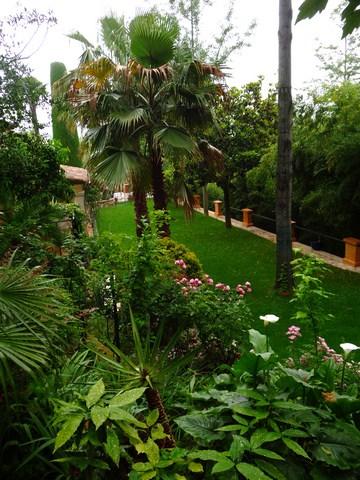 Photo 4 - Jardin