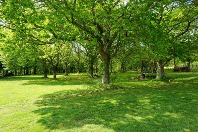 Photo 4 - Park