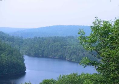 Photo 5 - Panoramic view