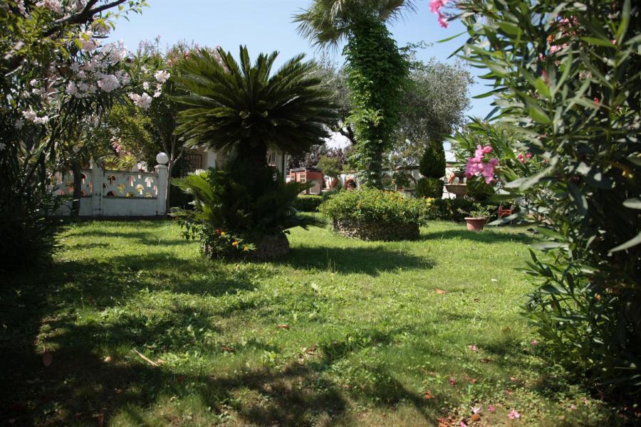 Photo 4 - Gardens
