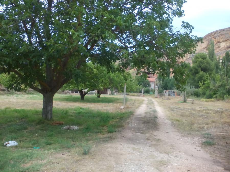 Foto 5 - Grundstück