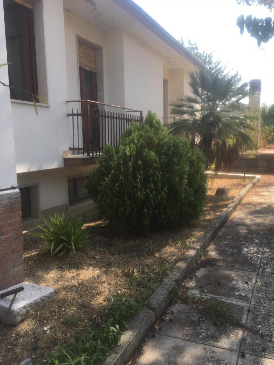 Foto 5 - Jardín