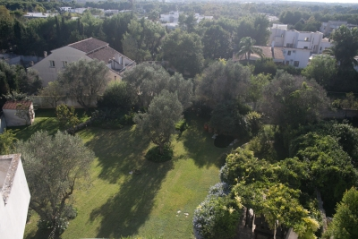 Photo 8 - Panoramic view