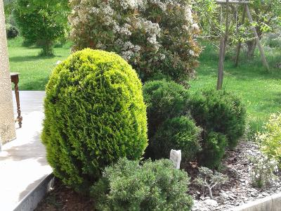 Photo 8 - Gardens