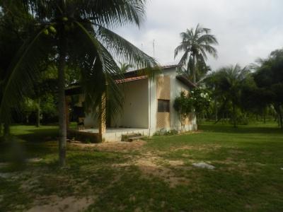 Photo 10 - House